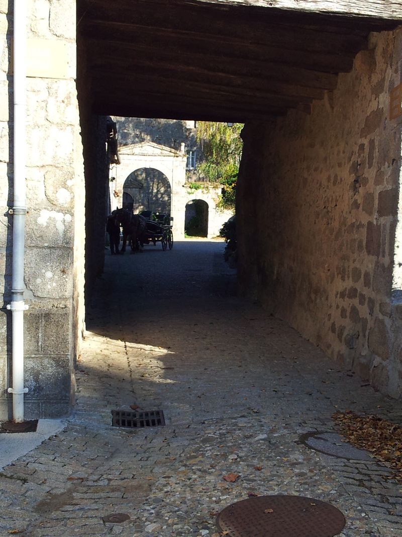 Limoges oct 2015 Mortemont 018