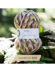 Goldfinch_840_Signature 4Ply