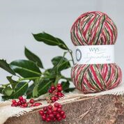 Christmas sock yarn